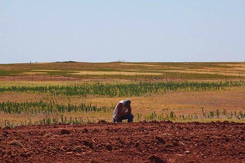 20120802-drought-united-states.jpg.492x0_q85_crop-smart